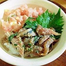 安いマグロも豪華に変身☆ネギトロ&アジのたたき丼