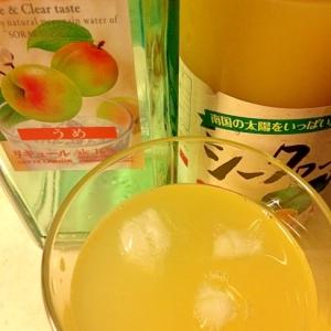 シークァーサー梅酒ソーダ
