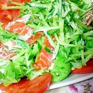 醤油麹漬けサーモンのサラダ