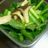 生でシャキシャキ!小松菜とエリンギのサラダ