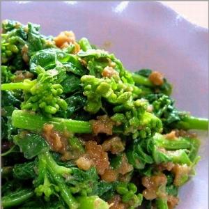 春野菜の菜の花のクルミ味噌和え