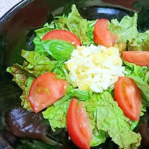 パインと酢玉葱のサラダ