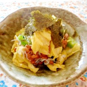 小松菜とキャベツの塩麹もみシラス納豆