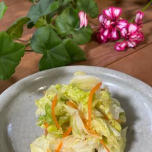 ビニール袋で❣️白菜の浅漬け生姜味