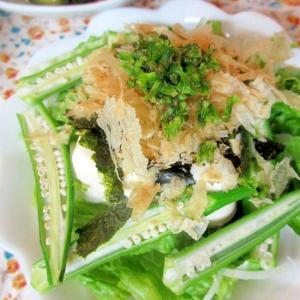オクラとしその実の豆腐サラダ