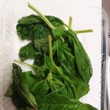 【料理人の保存テク】バジル(冷蔵庫で10日間)
