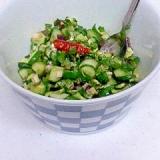 簡単♪ 干し野菜で 山形のだし風 (酢バージョン)