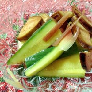 サッパリと♪茄子と胡瓜と茗荷のリンゴ酢漬け