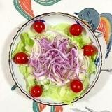 レタスと赤玉葱のサラダ