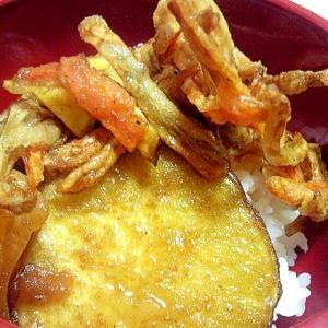 残った野菜のかき揚げとサツマイモの簡単天丼