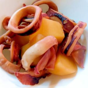 スルメイカとじゃが芋の煮物
