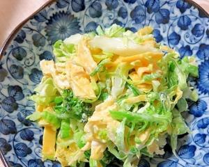キャベツと薄焼き卵のサラダ