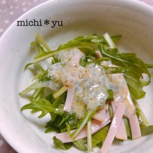 チーズ風味 チアシードドレッシングの水菜サラダ