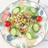 蒸しまめに枝豆、胡瓜、ミニトマト