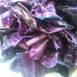 紫きゃべつの塩炒め