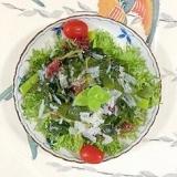 海藻サラダ、アスパラ、スプラウトのサラダ