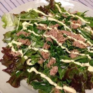 水菜と新玉ねぎのツナサラダ