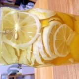 スッキリ☆まるごとレモンサワーの素