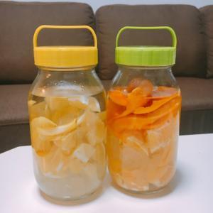 手作り果実酒レモンリキュールといよかんリキュール