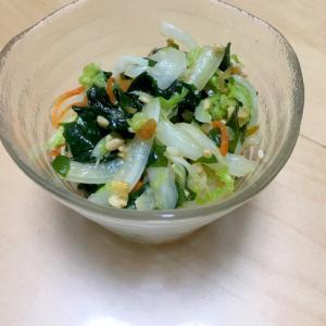 わかめと白菜の中華サラダ