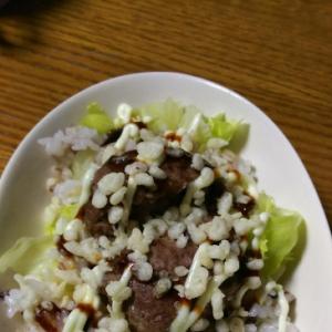 ハンバーグのサラダご飯