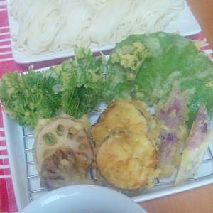 稲庭うどんと天ぷら盛り合わせ・ふきの葉など☆