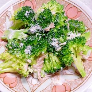 簡単♪おつまみ♪ブロッコリーとツナのデリ風サラダ
