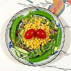 水菜と赤玉葱、スイートコーンのサラダ