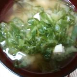 キャベツと木綿豆腐のお味噌汁