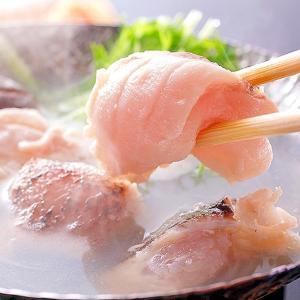 幻の高級魚!クエ鍋(よか魚ドットコム)