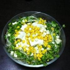 レタスと豆腐のサラダ