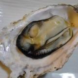 *シリコンスチーマーで簡単蒸し牡蠣*