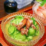 ホタルイカと胡瓜のわさび酢
