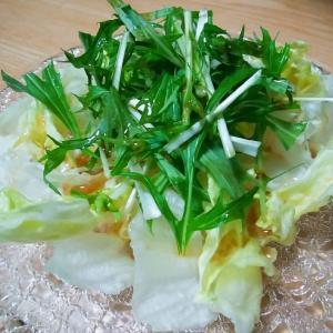 レタスと水菜の中華風味のサラダ