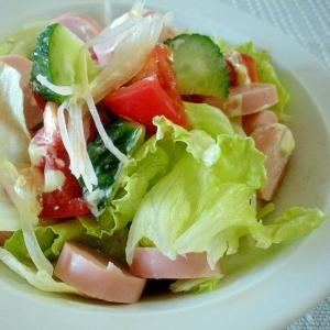 ☆野菜サラダのニンニクマヨ風味☆