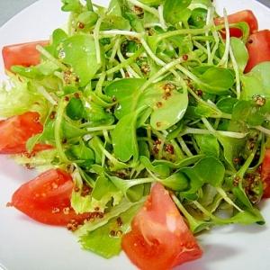 つまみ菜とトマトのサラダ