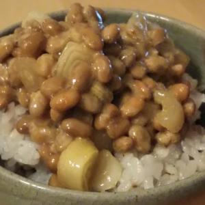 癖になる らっきょう納豆