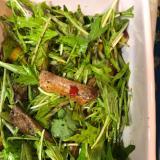 鴨と水菜のサラダ^ - ^