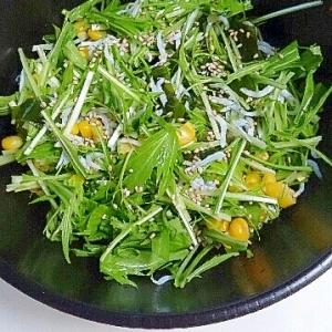 水菜とシラスのわかめサラダ~酢醤油ドレッシング~