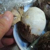 里芋の皮の剝き方☆レンジ使用