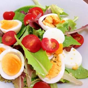 ベビーリーフと卵のサラダ