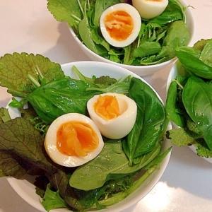 バジルで香り付け☆生野菜と茹で卵のハーブサラダ