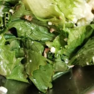レタスと豆腐とシーチキンのサラダ