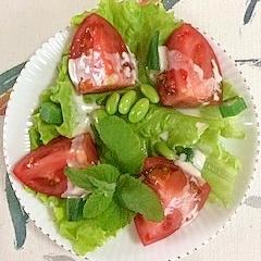 リーフレタスとトマトと枝豆とオクラのサラダ