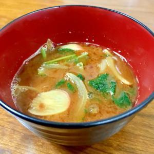 玉ねぎとラディッシュの味噌汁