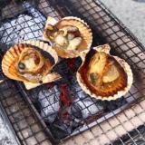さいき屋形島・緋扇貝の炭火焼