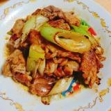 豚肉と長ネギの焼肉のたれ炒め