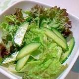 さっぱり!チョレギ風サラダ++