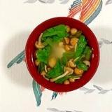 春菊、塩とうふ、なめこ、長葱のお味噌汁