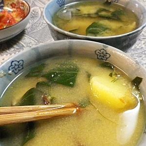 葉とうがらしとジャガイモの味噌汁